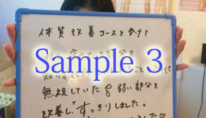 voice_3